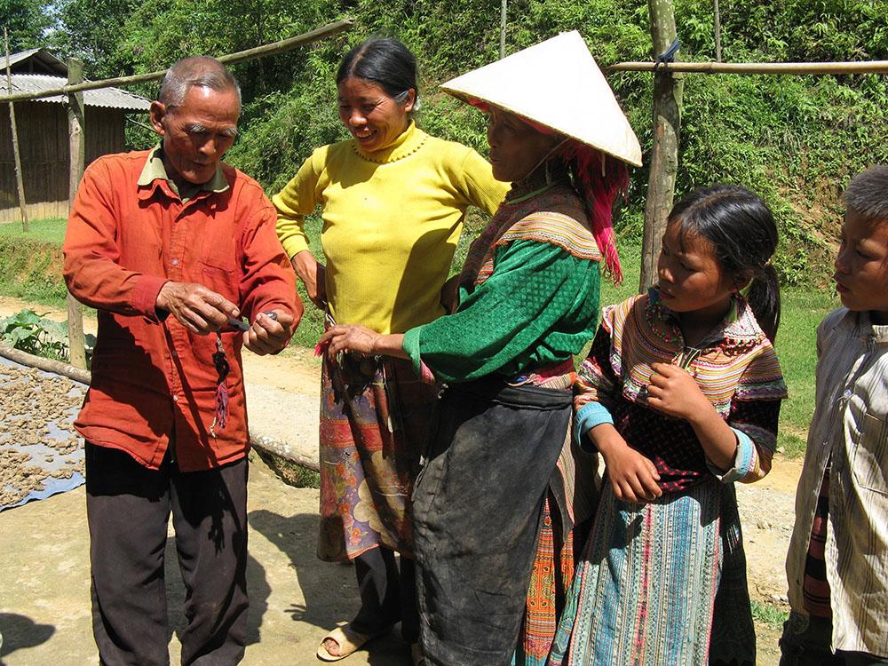Flower Hmong Bac Ma Vietnam